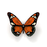 Orange solar butterfly Royalty Free Stock Image