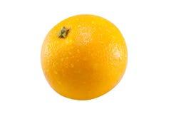 Orange sondern Sie aus Lizenzfreie Stockfotos