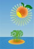 Orange Sonne. Stockbild