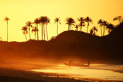 Orange Sonnenuntergang Backlifght Stockbild