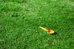 Orange spade in a green field Stock Images