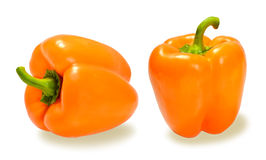 orange spanska peppar på en horisontallodlinje för vit bakgrund Royaltyfri Fotografi