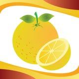 Orange. Special orange on special background Stock Images