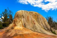 Orange Spring Mound Royalty Free Stock Images