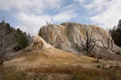 Orange Spring Mound Yellowstone Royalty Free Stock Photo