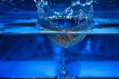 Orange Spritzen im Wasserblauhintergrund Lizenzfreies Stockbild