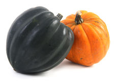 Orange squash. Orange acorn squash over white background Royalty Free Stock Photo