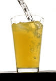 Orange squash drink with ice. In studio Royalty Free Stock Images