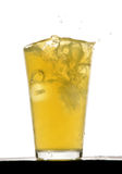Orange squash drink with ice. In studio Royalty Free Stock Photography