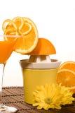 orange squeezer Royaltyfri Fotografi