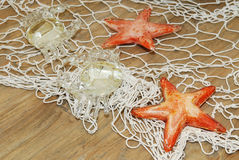 Orange starfish in the net stock photo