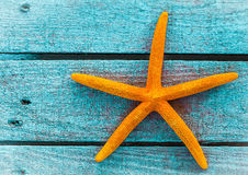 Orange starfish or sea star on blue wooden boards. Orange starfish or sea star on painted rustic blue wooden boards with copyspace a nautical souvenir of a Royalty Free Stock Photography