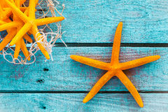 Orange starfish on turquoise boards with fish net. Collection of orange starfish on turquoise blue wooden boards with fishing net for a colourful nautical or Royalty Free Stock Image
