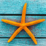 Orange starfish on turquoise wooden boards Royalty Free Stock Photo