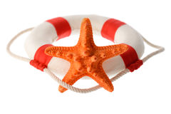 Orange starfish and white-red lifebuoy Royalty Free Stock Images
