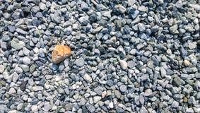 Orange stone Royalty Free Stock Images
