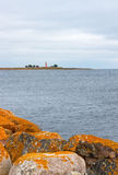 Orange stones on the coastline of Gotland, Sweden Royalty Free Stock Photography