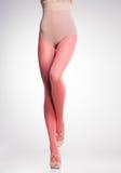 Orange Strümpfe auf sexy Frauenbeinen auf Grau lizenzfreies stockbild