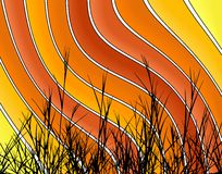 Orange stripes Royalty Free Stock Images