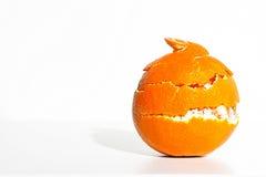 Orange striptease. Orange peel wrapped around orange Stock Photography