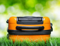 Orange suitcase in green grass on natural background Stock Photo