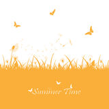 Orange summer background Royalty Free Stock Images