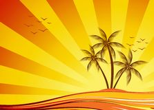 Orange summer design Stock Photo