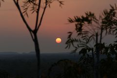 Sun Rising Over The Plains. The orange sun is rising through the trees over the plains in northern Australia royalty free stock images