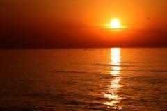 Orange sun on the sky Royalty Free Stock Photography