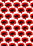 Orange sunflower pattern on a white background Royalty Free Stock Photo