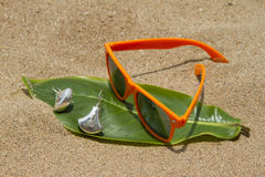 Orange sunglasses lying on the sand beach. India Goa Royalty Free Stock Photo