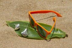 Orange sunglasses lying on the sand beach. India Goa Royalty Free Stock Photo