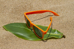 Orange sunglasses lying on the sand beach. India Goa Stock Image