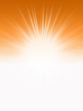 Orange Sunlight Stock Image