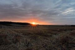 Orange sunrays from the farm Stock Image