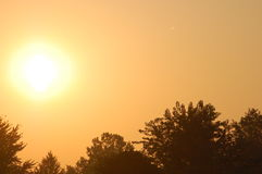 Orange Sunrise. An Orange Sunrise Peeks over the trees Stock Image