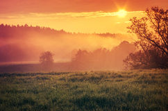 Orange sunrise in countryside Royalty Free Stock Photography