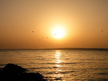 Orange sunrise, Egypt Royalty Free Stock Images