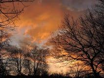 Orange sunrise, Lithuania Royalty Free Stock Photography