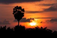 Orange sunrise on the sky Stock Photography