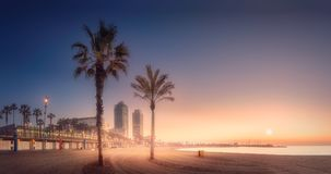 Orange sunrset on beach of Barcelona with palm Royalty Free Stock Photo