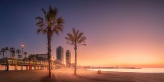 Orange sunrset on beach of Barcelona with palm Royalty Free Stock Photos