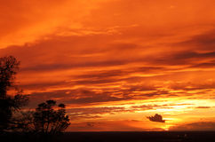 Orange Sunset. With color bursting all over royalty free stock photos