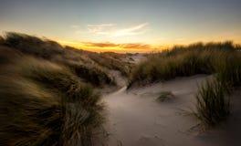 Orange sunset above grassy sanddunes. On the oregon coast Royalty Free Stock Photo
