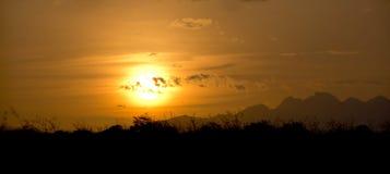 Orange Sunset Stock Images