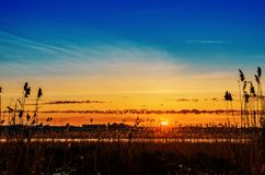 Orange sunset in blue sky over river with canes. In winter Stock Photo