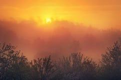 Orange sunset in countryside Royalty Free Stock Photo