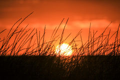 Orange sunset in Crimea. Royalty Free Stock Images