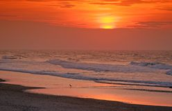 Orange sunset over beach. Scenic view of colorful orange sunset over beach with waves in foreground Royalty Free Stock Photos