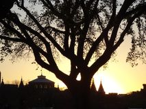 Sunset silhouette and the National Mall Stock Photography